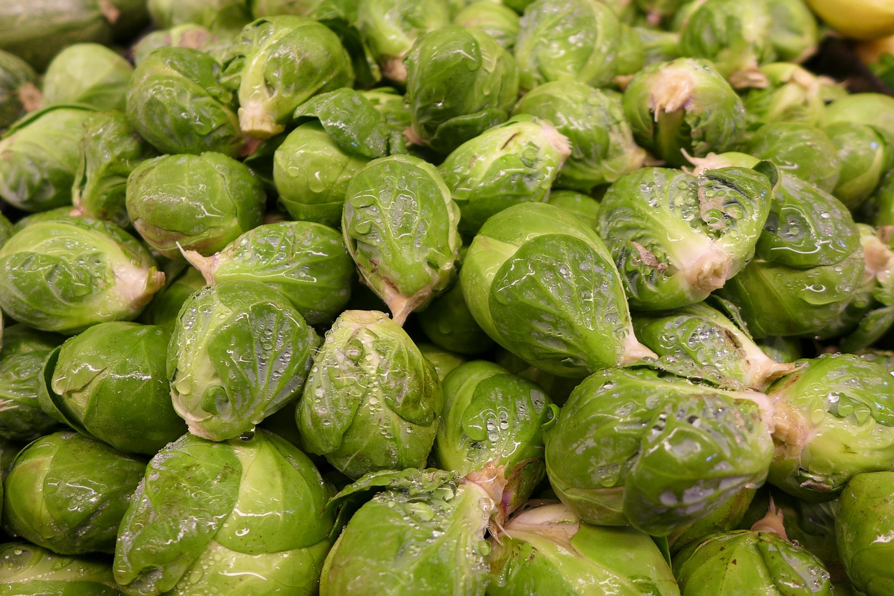 brussel sprouts vegetable green free photo
