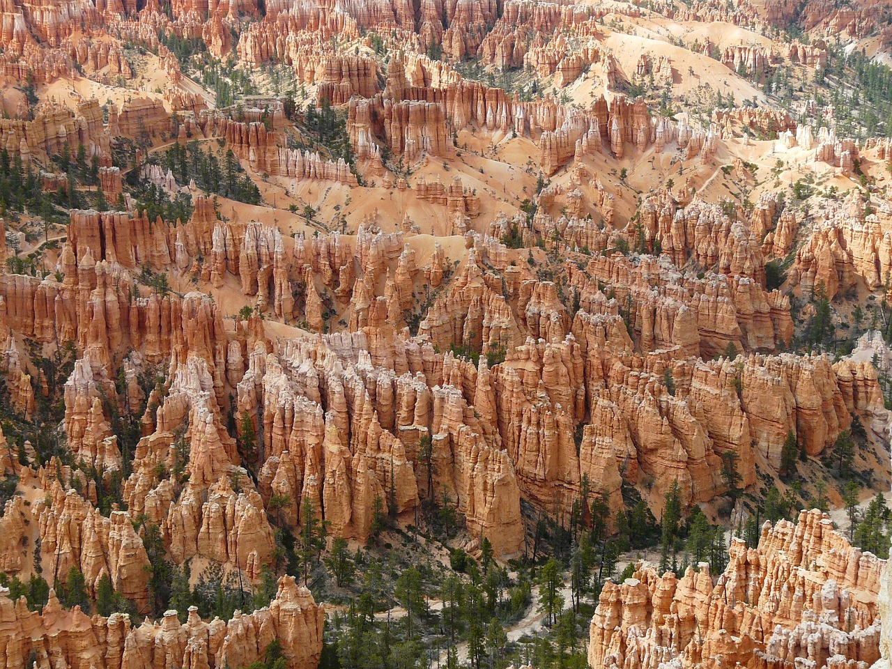bryce canyon,bryce canyon national park,utah,united states,usa,gorge,sand stone,pyramid rock,hoodoo,paunsaugunt plateau,paunsaugunt,amphitheater,erosion,erosion forms,landscape,nature,red,national park,rock,free pictures, free photos, free images, royalty free, free illustrations, public domain