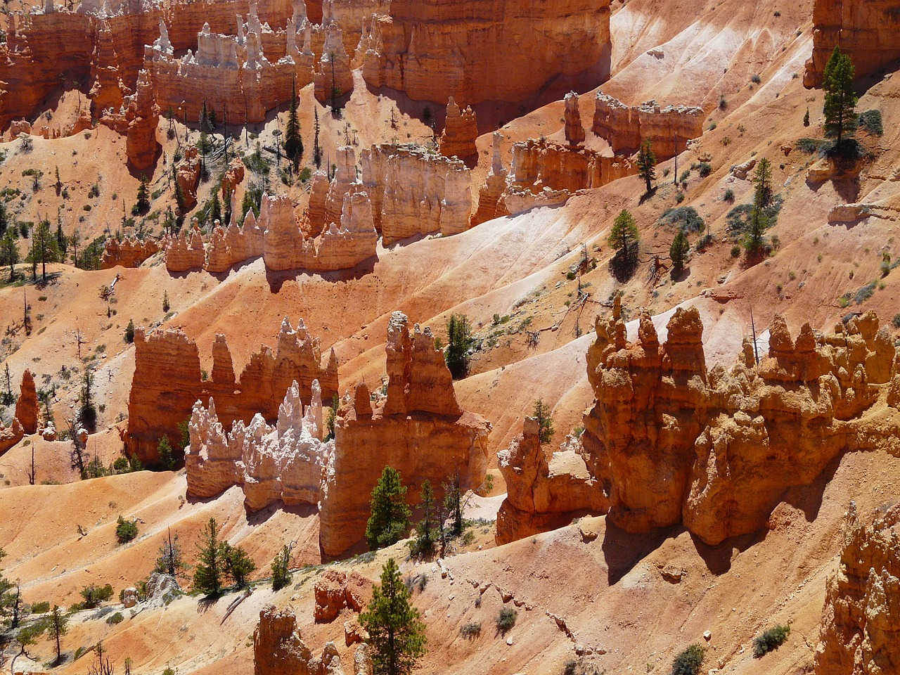 bryce canyon,bryce canyon national park,utah,united states,usa,gorge,sand stone,pyramid rock,hoodoo,paunsaugunt plateau,paunsaugunt,erosion,erosion forms,landscape,nature,red,national park,rock,free pictures, free photos, free images, royalty free, free illustrations, public domain