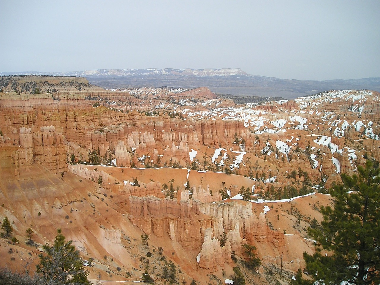 bryce canyon canyon gorge free photo