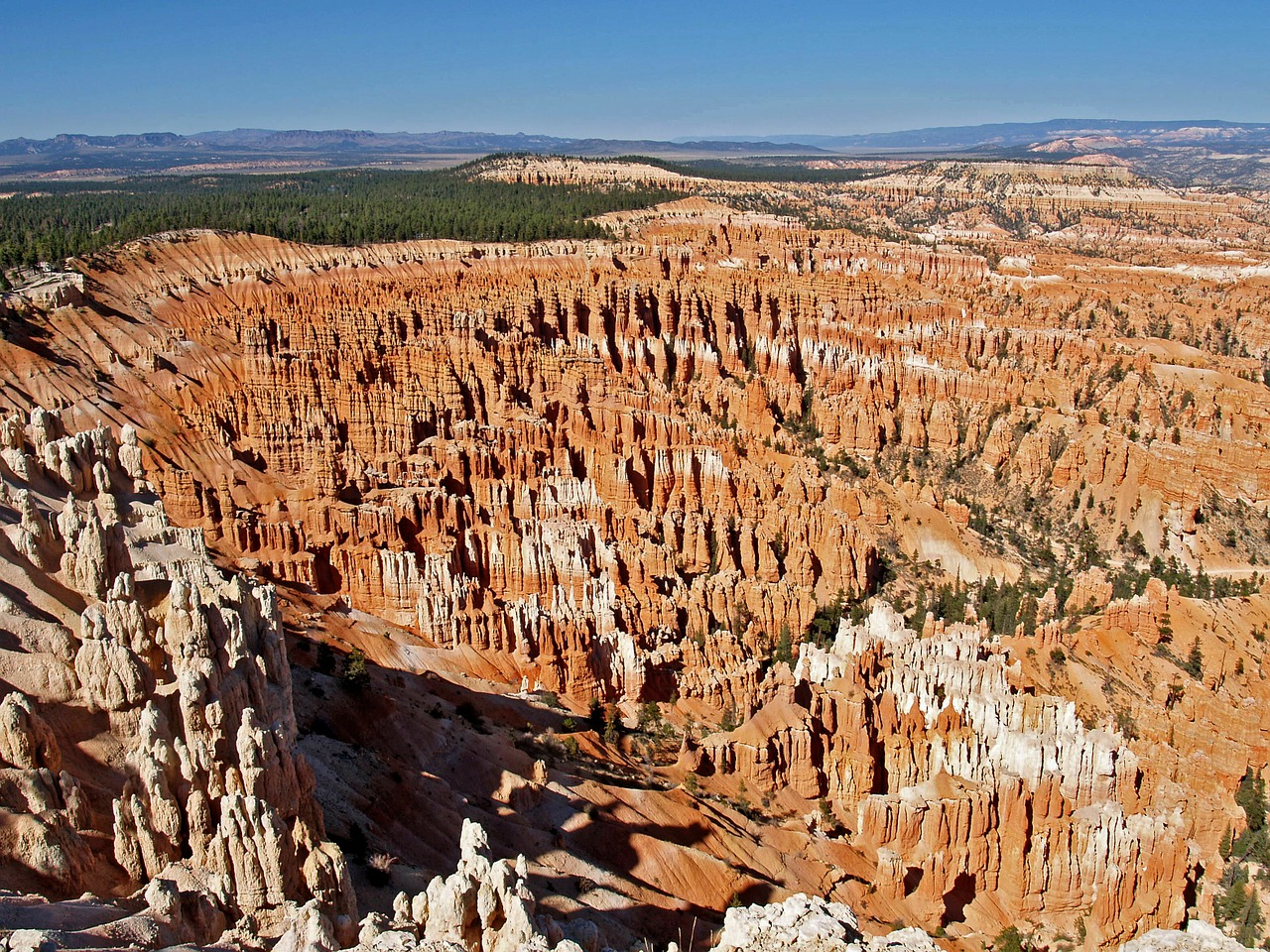 bryce canyon utah usa free photo