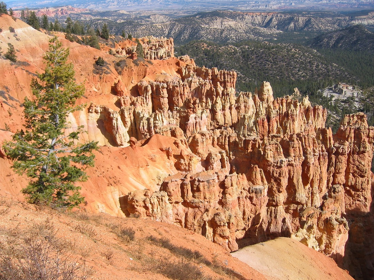 bryce canyon seven dwarfs nature free photo