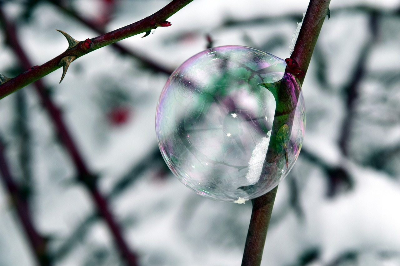 bubble soap bubble winter free photo