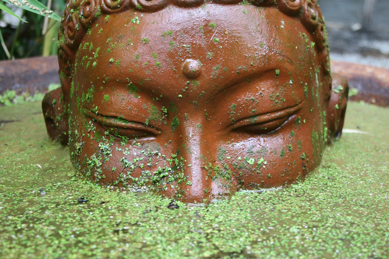 Buddha,main,garden,water,pond - free photo from needpix.com