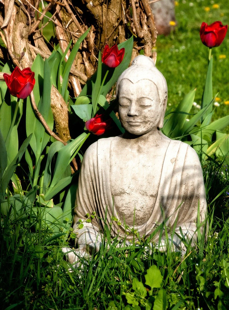 buddha buddhism religion free photo