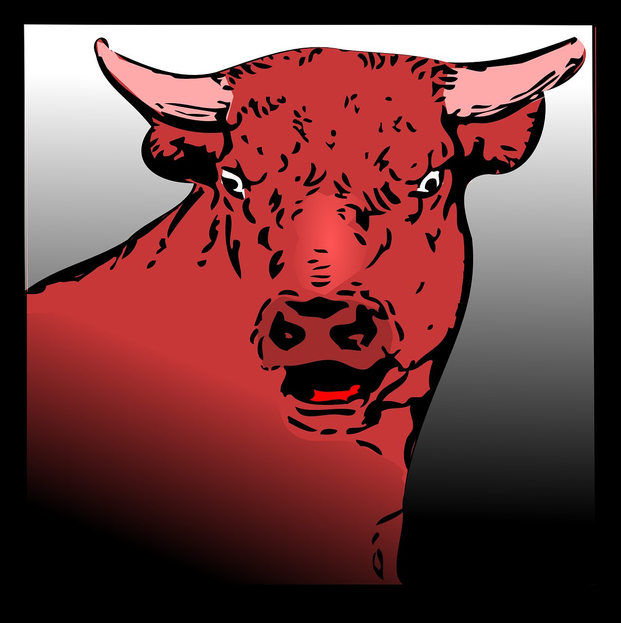 bull angry red free photo