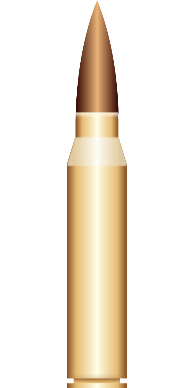 bullet shell cartridge free picture