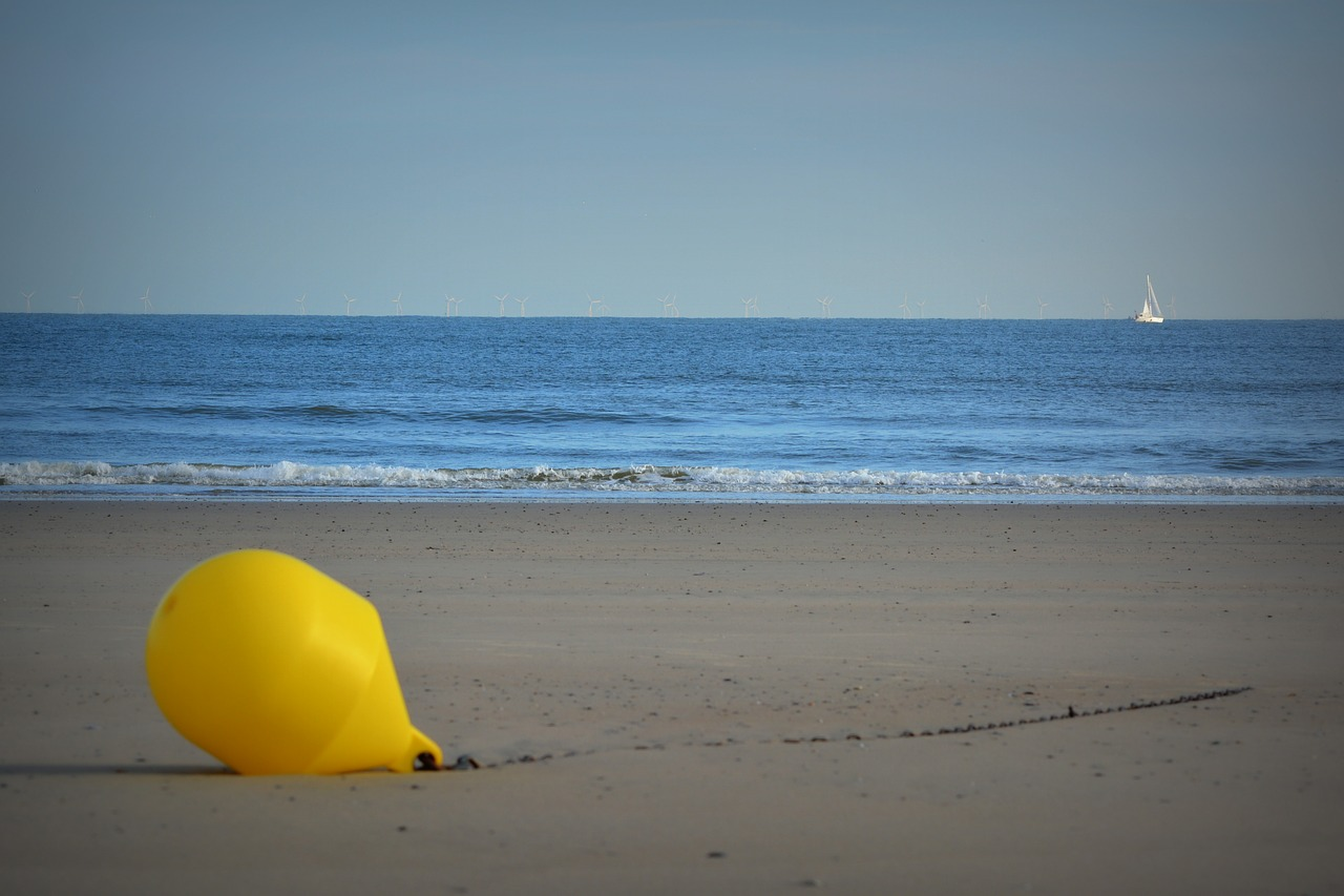 buoy beach sea free photo