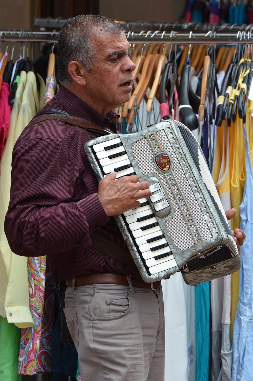 busker musician accordion free photo