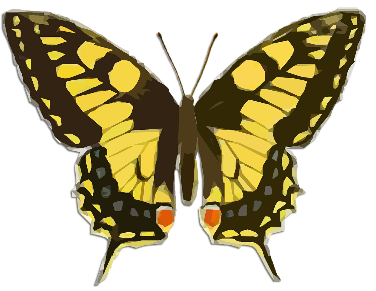 butterfly vintage clip art free photo