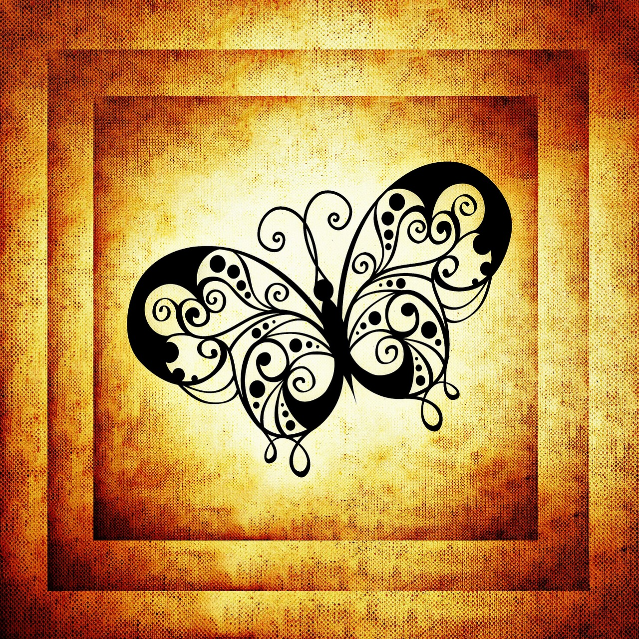 butterfly frame image free photo