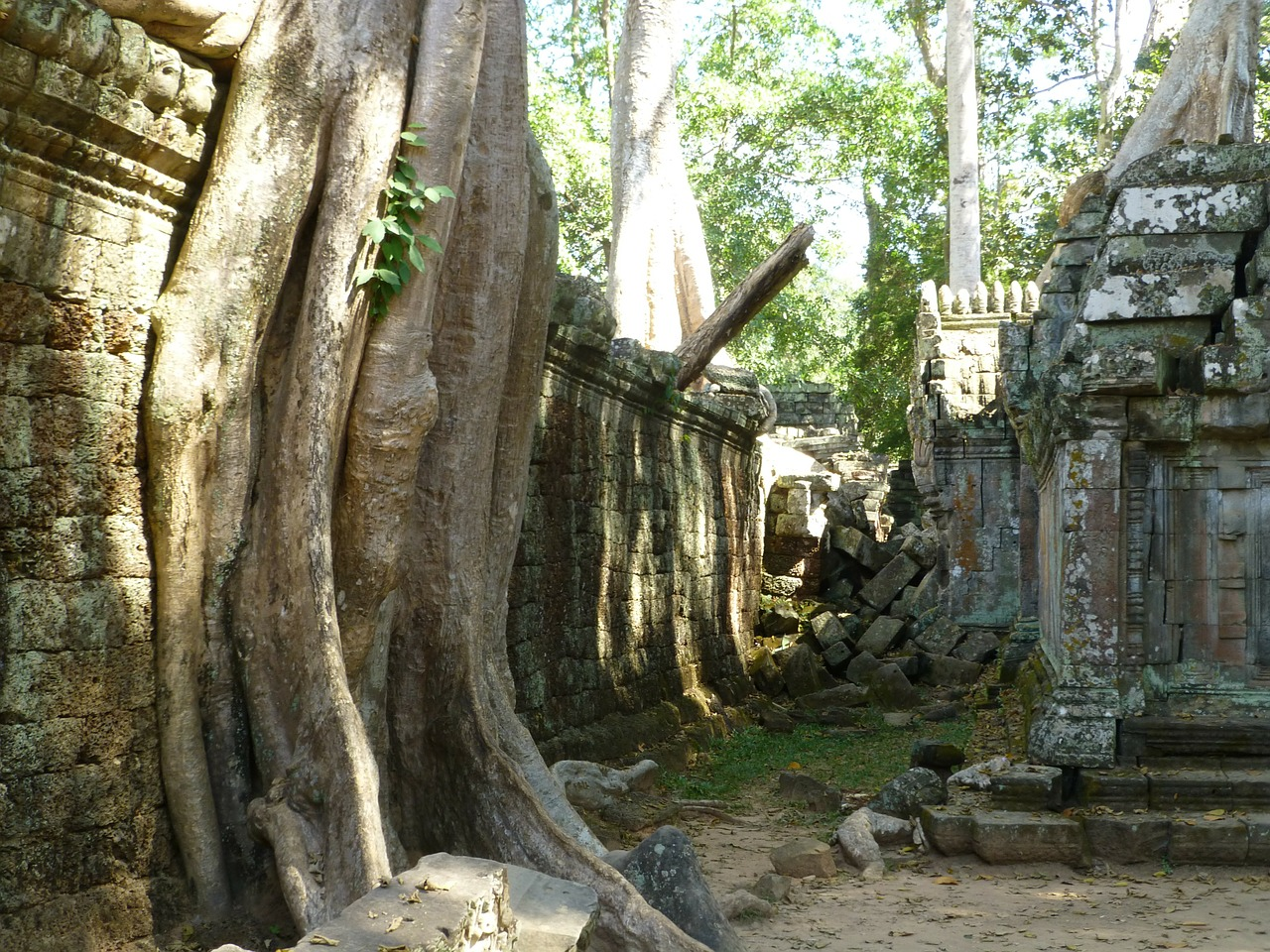 cambodia temple siem reap free photo
