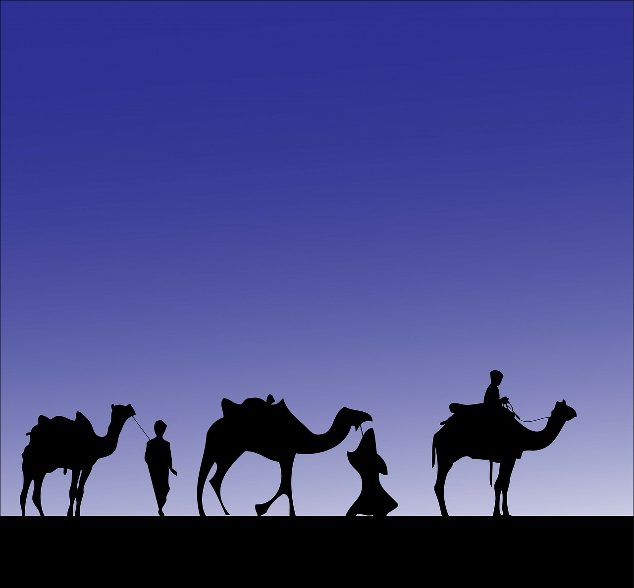 camel camels wise men free photo