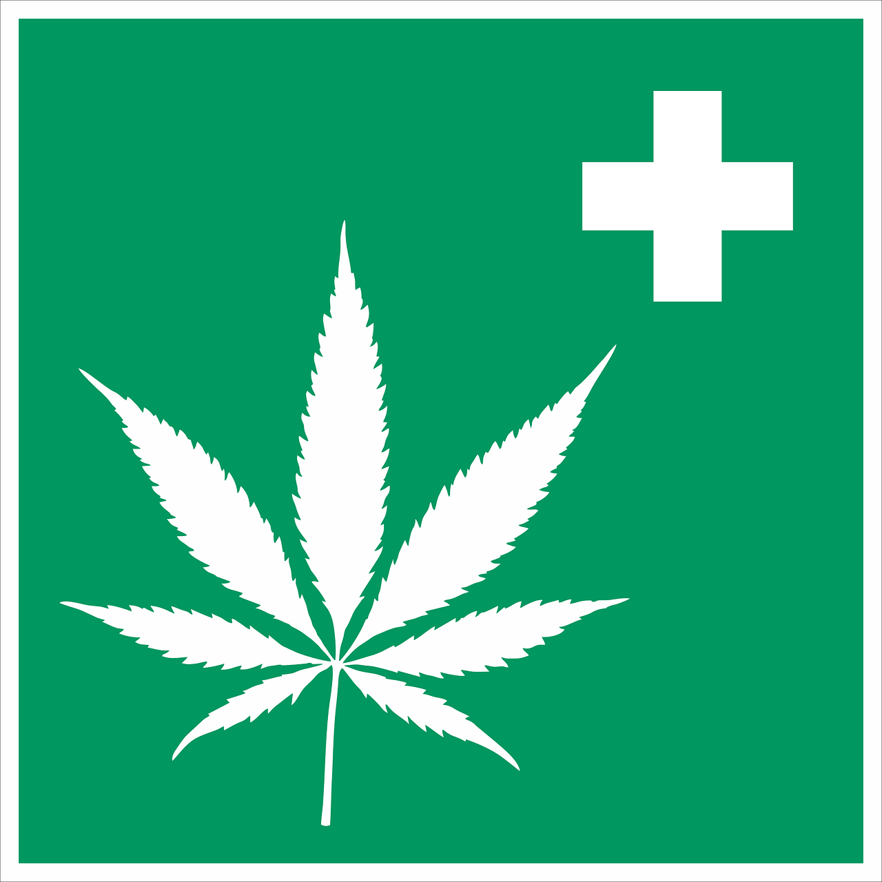 Cannabis,hemp,intoxicant,hemp leaf,medicine - free image from needpix.com
