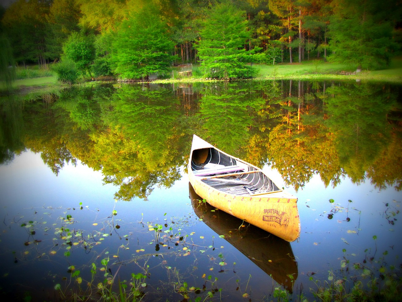 canoe water nature free photo