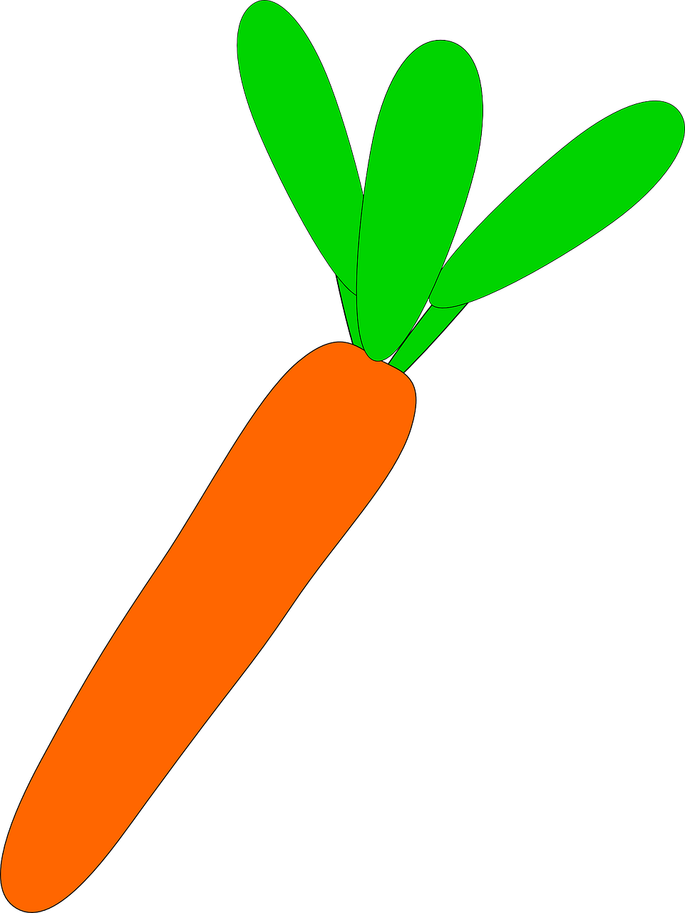 carrot vegetable vegetarian free photo