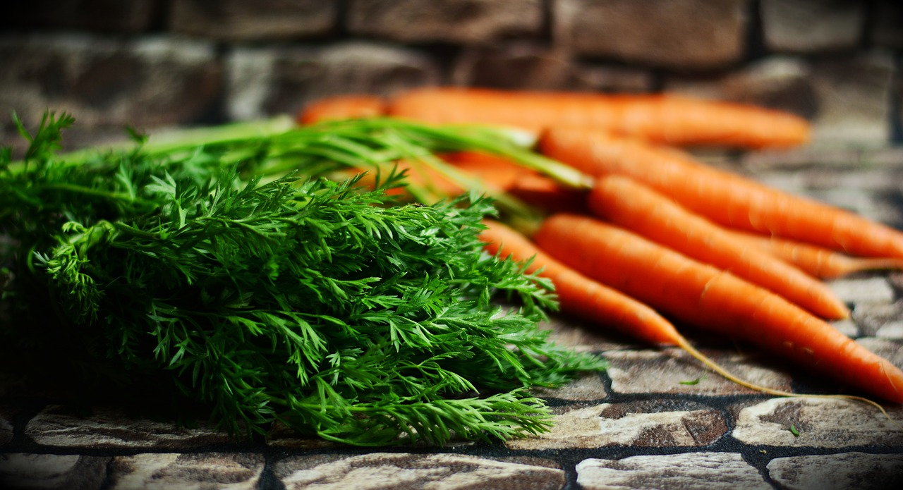 carrots vegetables harvest free photo
