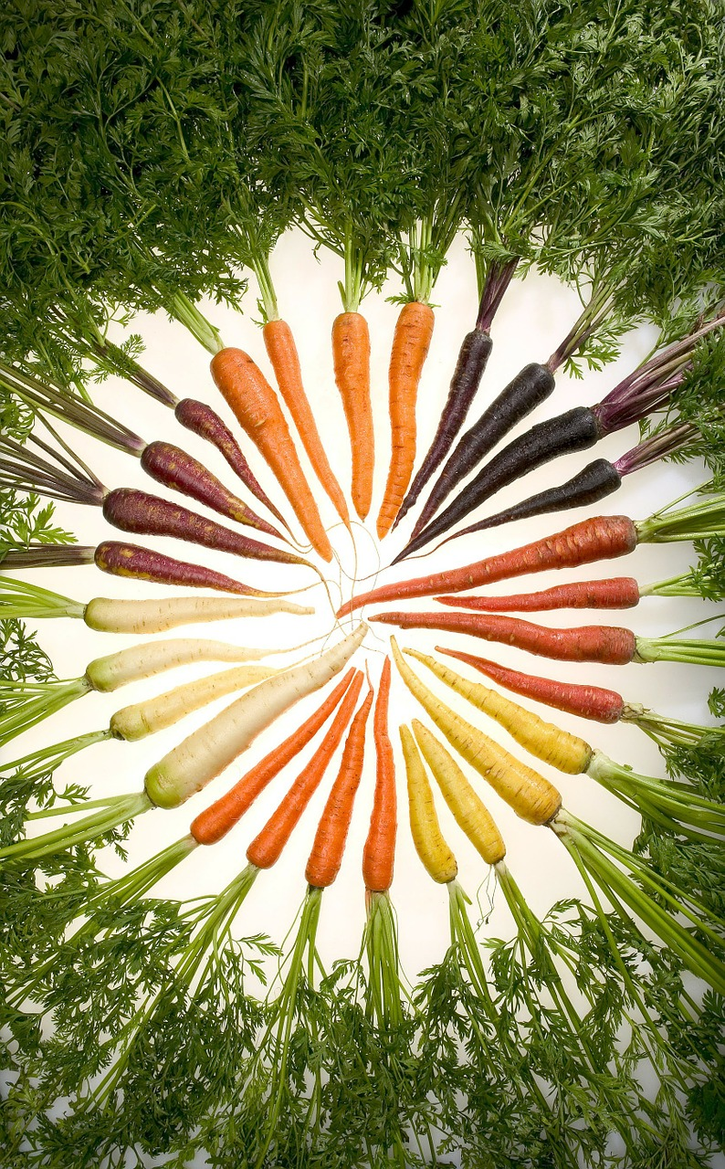 carrots variety vegetables free photo