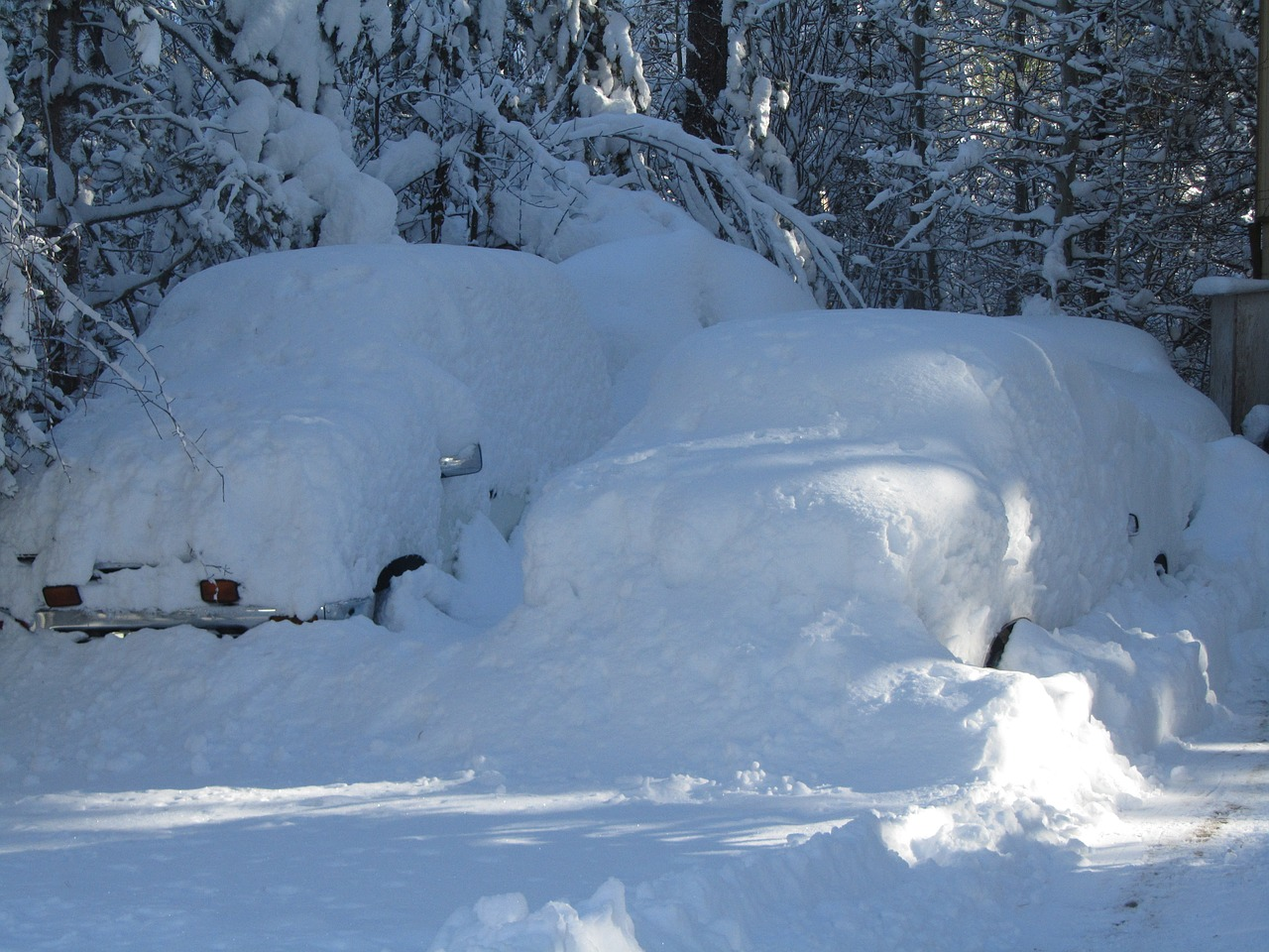 cars coverd with snow winter snow drifts free photo