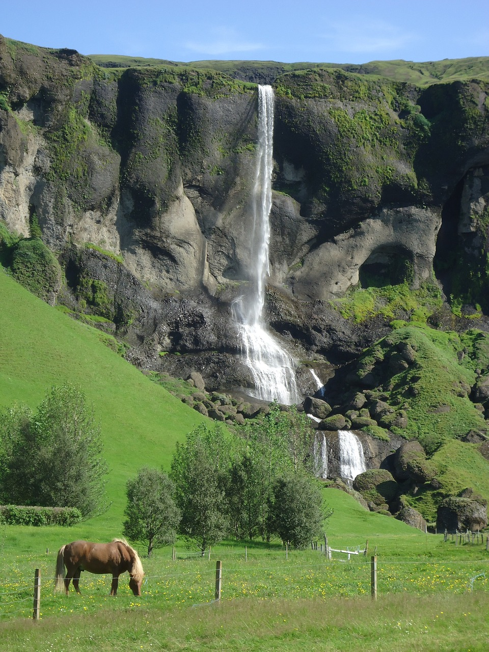 cascade,horse,iceland,free pictures, free photos, free images, royalty free, free illustrations, public domain