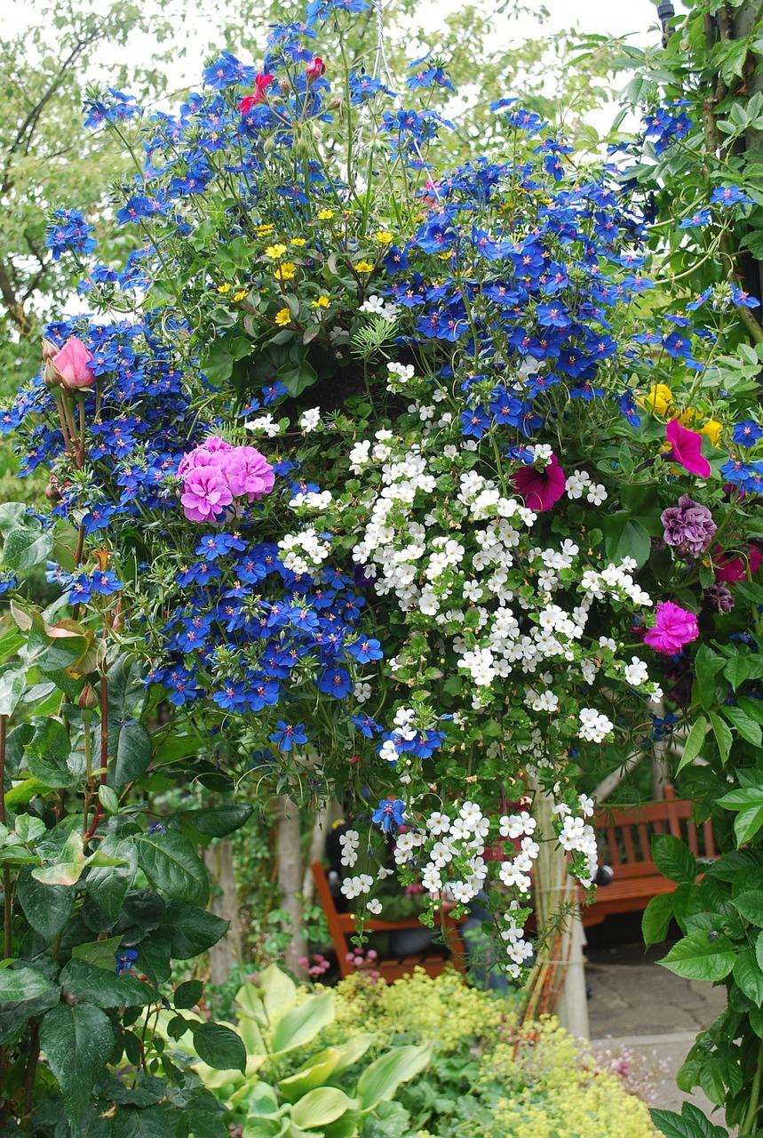 Cascade of flowersblossomspringbloomplant free photo from cascade of flowers blossom spring mightylinksfo