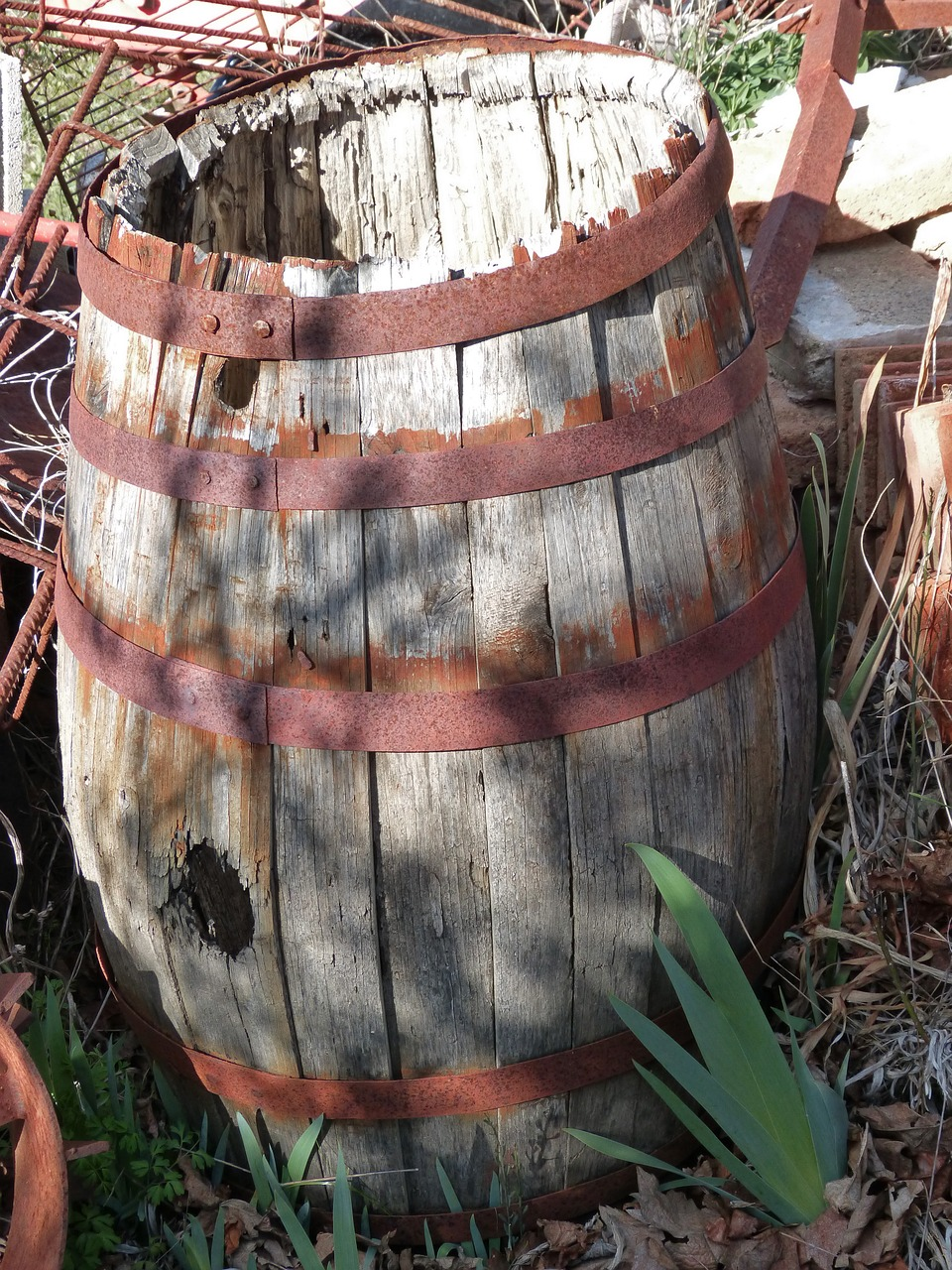 cask viticulture old free photo