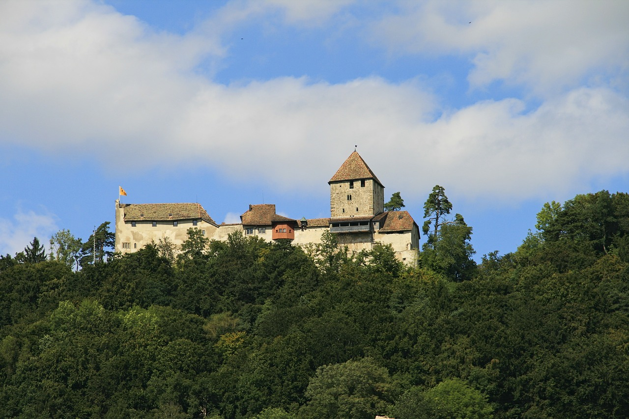 castle fortress switzerland free photo