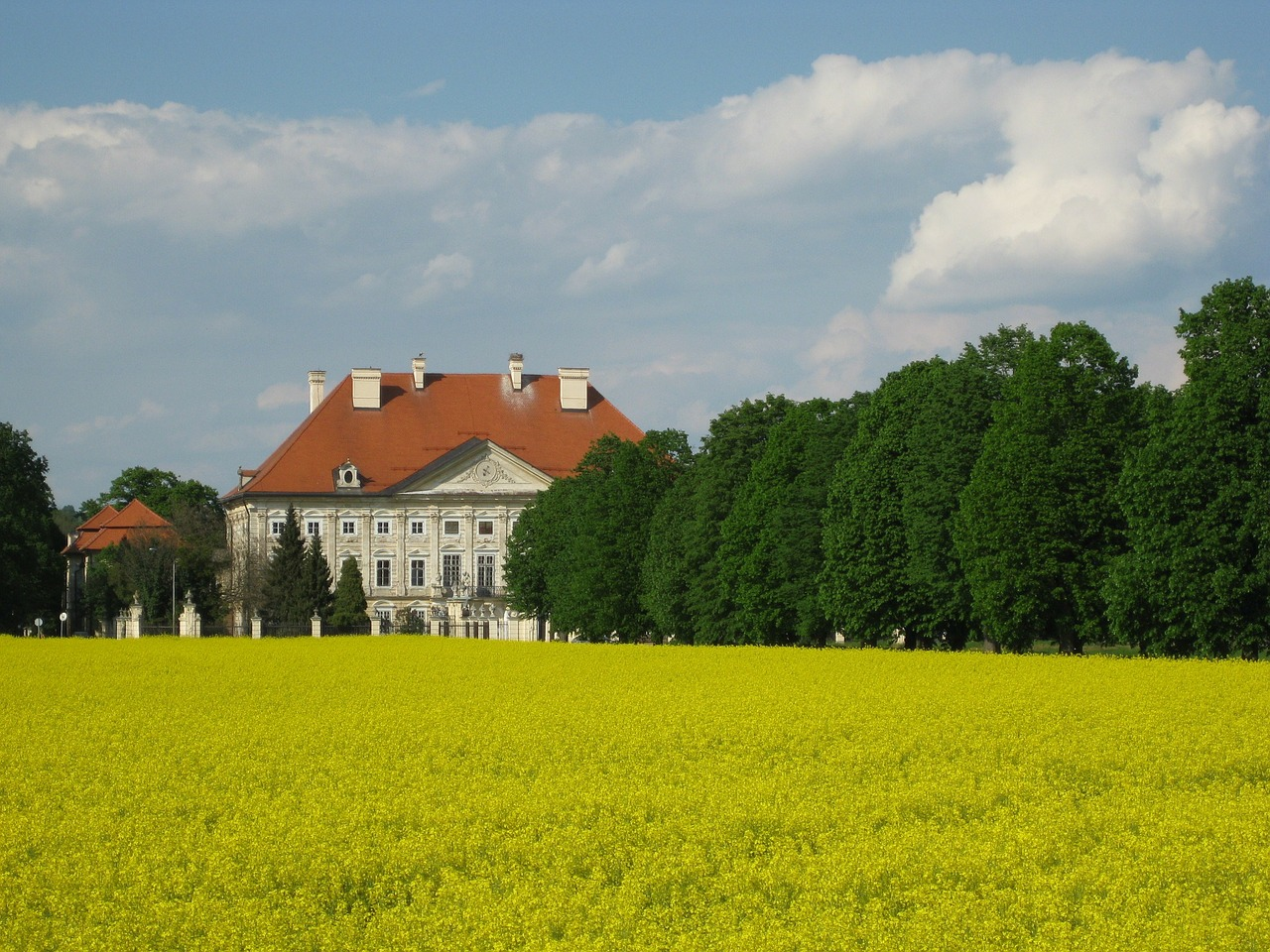 castle,slovenia,field of rapeseeds,home,property,villa,free pictures, free photos, free images, royalty free, free illustrations, public domain