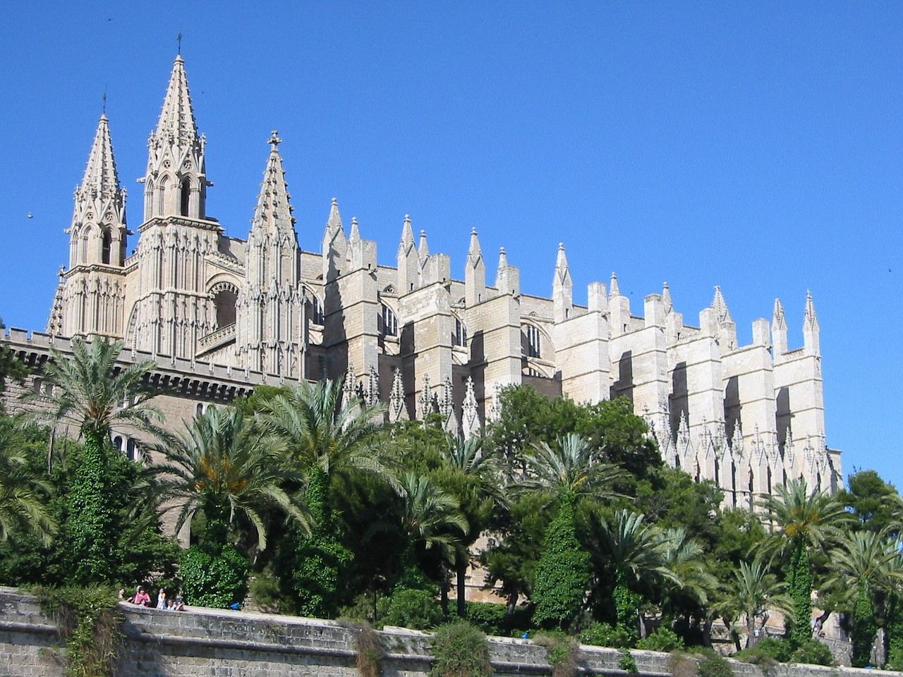 cathedral mallorca free pictures free photo