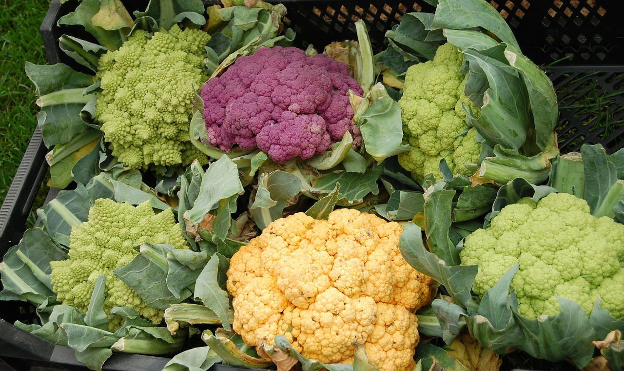 cauliflower vegetables colorful free photo