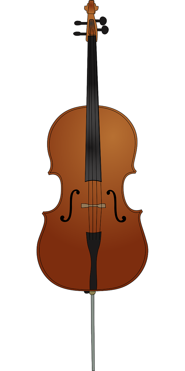cello instrument string free photo