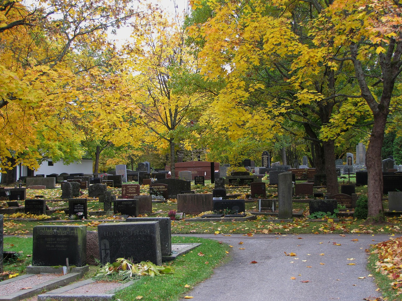 cemetery autumn fall colors free photo