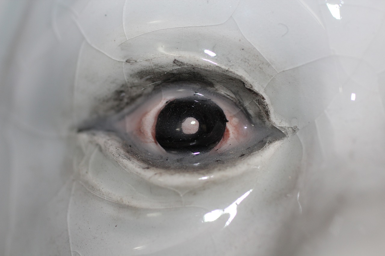 ceramics eye eyeball free photo