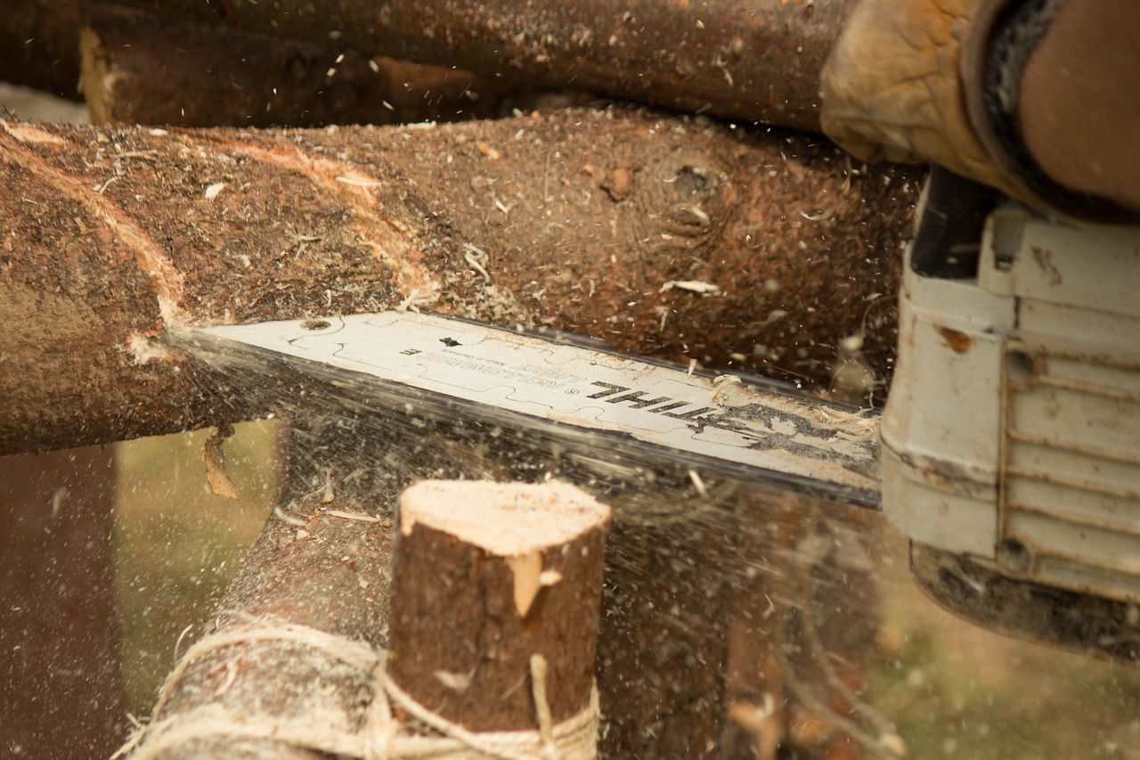 chainsaw woodcutter wood free photo