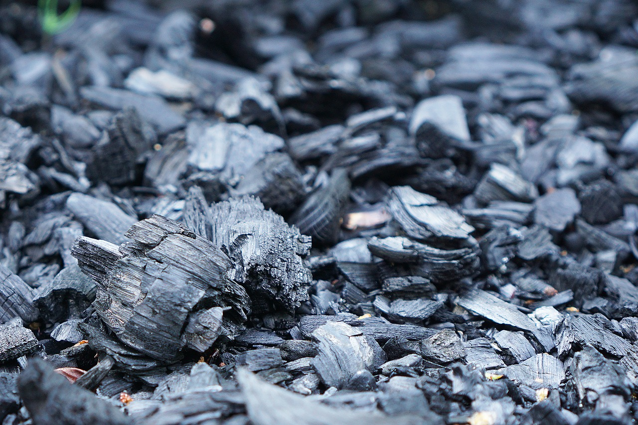 charcoal fire briquettes free photo