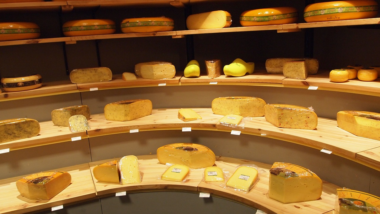 cheese types shop free photo