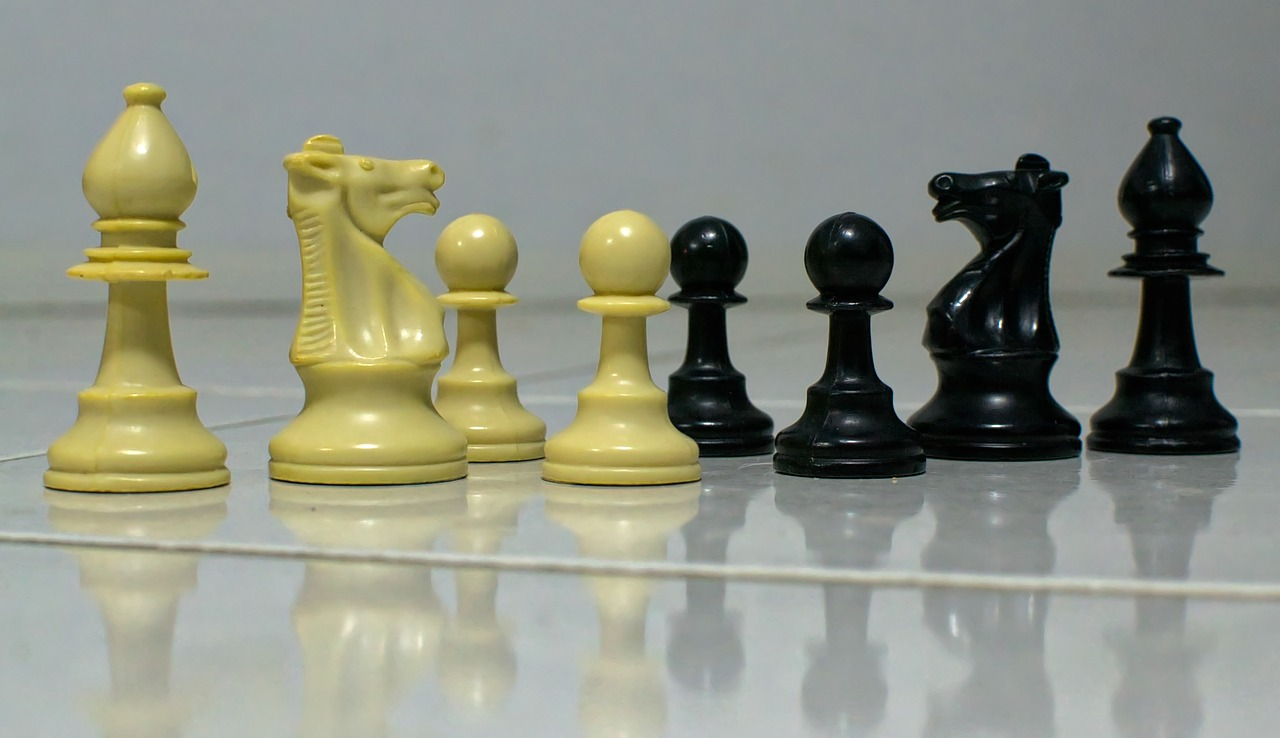 chess,black,white,challenge,battle,knight,pawn,bishop,free pictures, free photos, free images, royalty free, free illustrations, public domain
