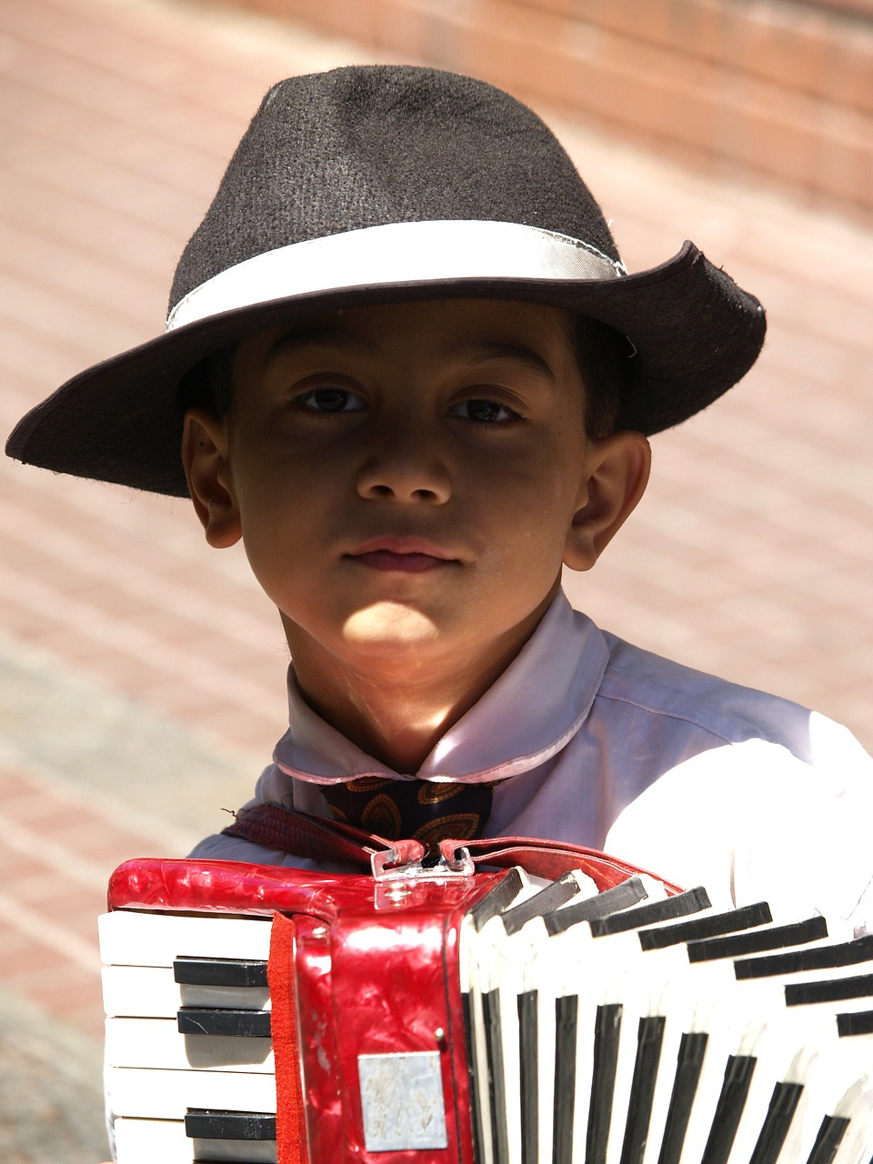 child,cute,hat,person,playing,accordion,childhood,free pictures, free photos, free images, royalty free, free illustrations, public domain