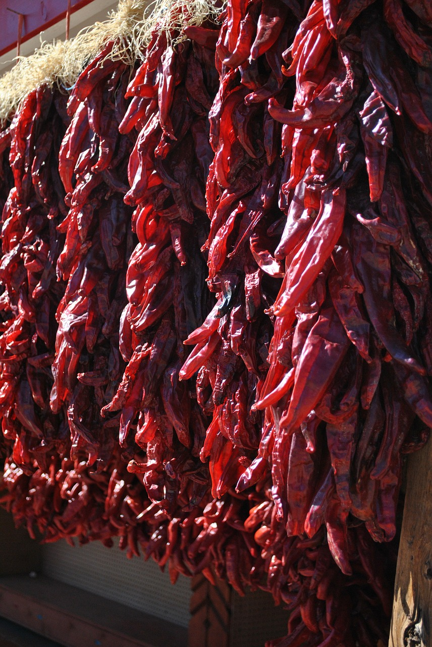 chiles ristras santa fe free photo