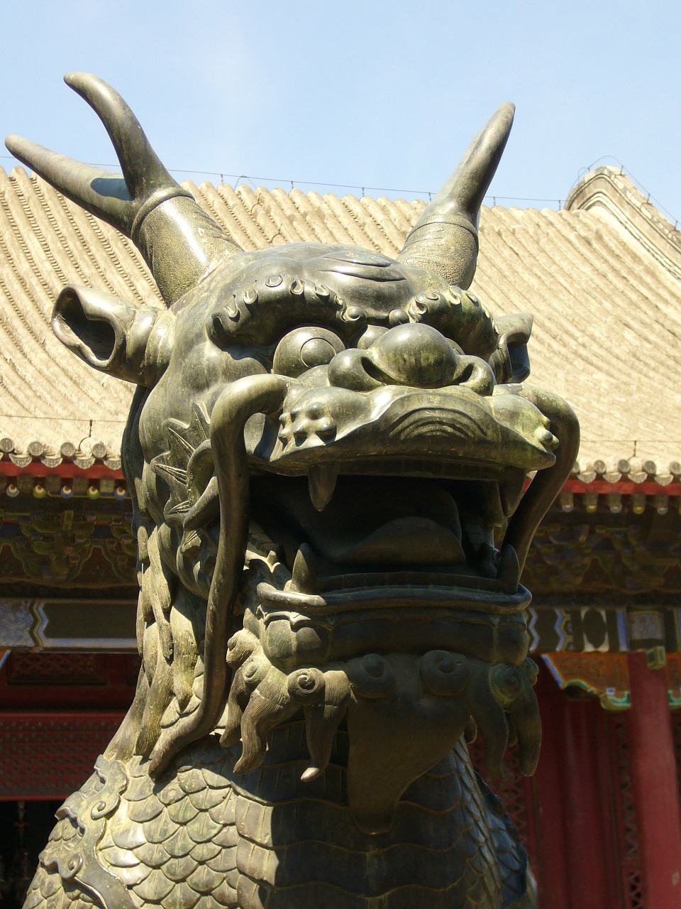 china dragon mythical creatures free photo