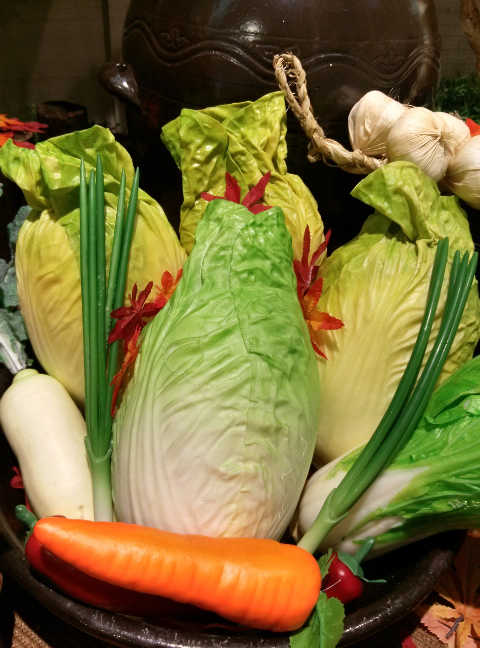 chinese cabbage carrot leek free photo