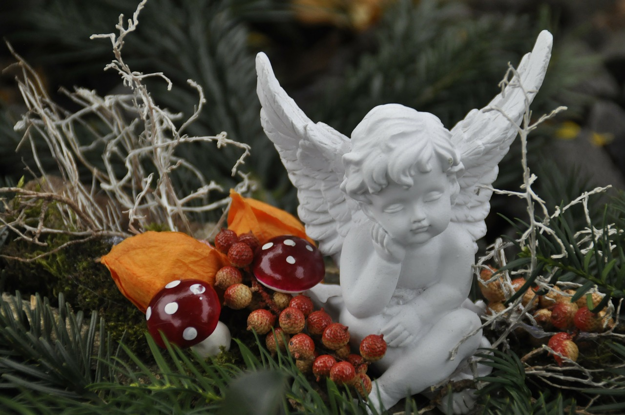 christmas angel free pictures free photo