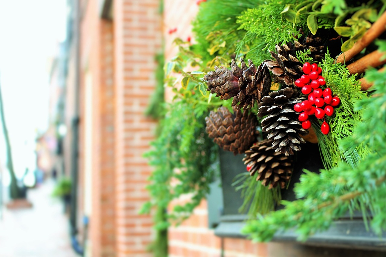 christmas decorations xmas decorations pine cones free photo