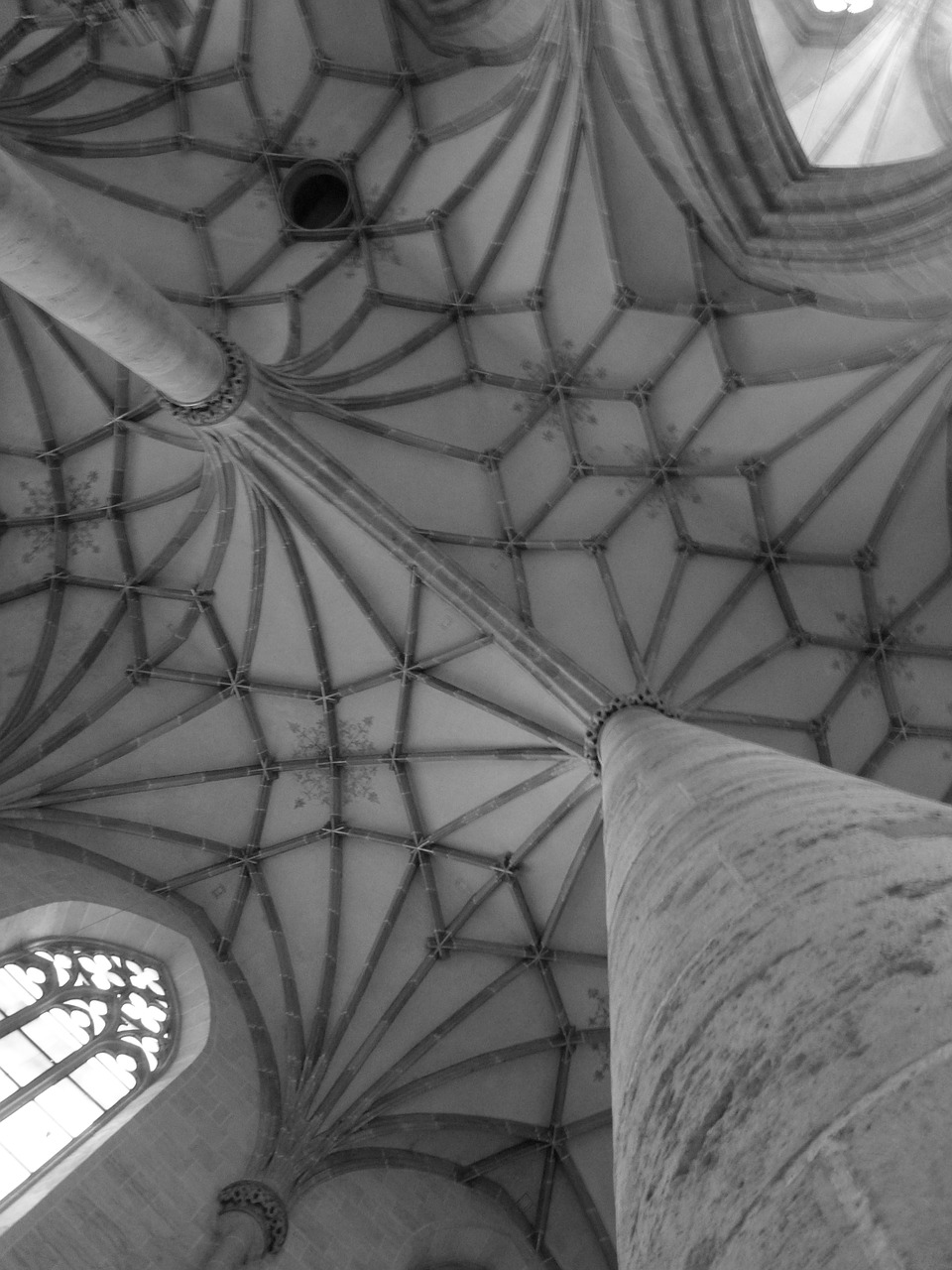 church münster rib vault free photo