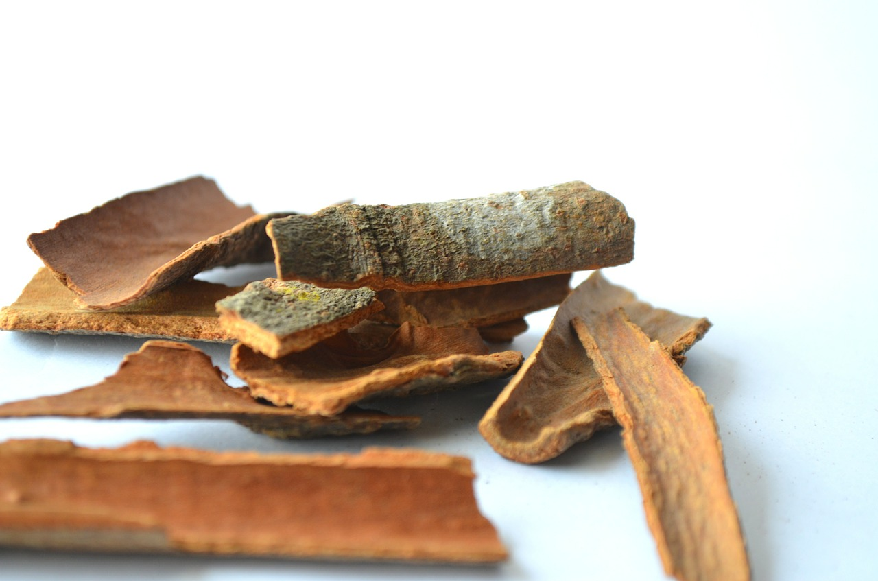 cinnamon sticks spices free picture