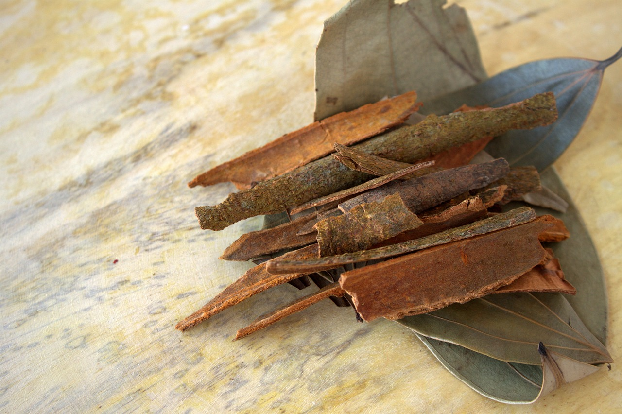 cinnamon indian spice free picture