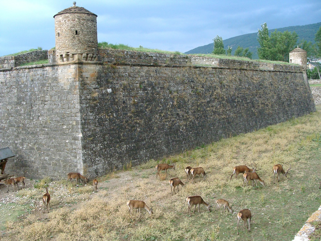 citadel fortification jaca free photo