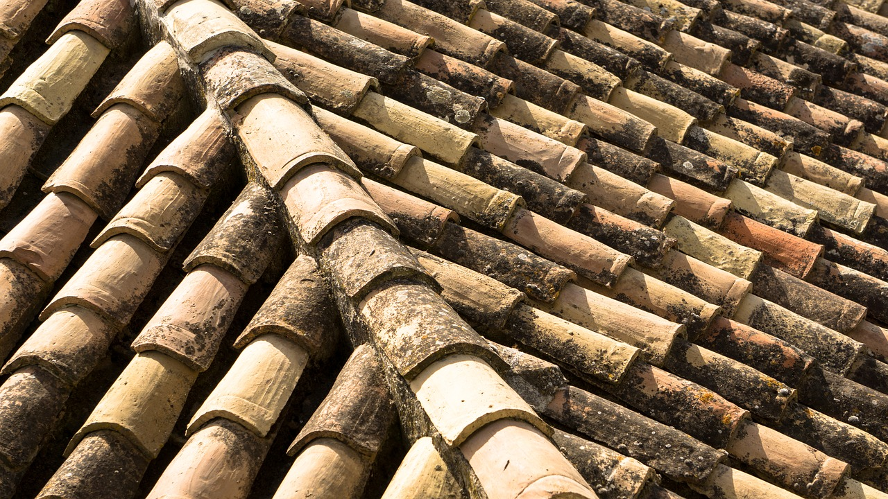 clay roof,slate roof,tile roof,ceramic roof,pattern,roof,slate,construction,texture,tile,roofing,building,architecture,rooftop,exterior,shingle,clay,ceramic,free pictures, free photos, free images, royalty free, free illustrations, public domain