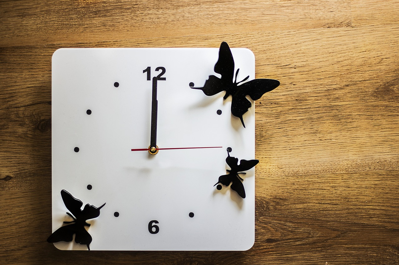 clock time butterflies free photo