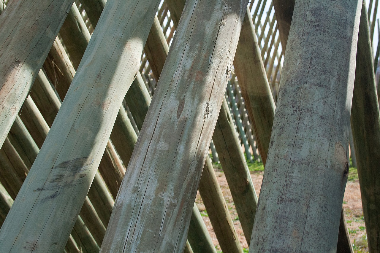 close up of pole structure sculpture wood free photo